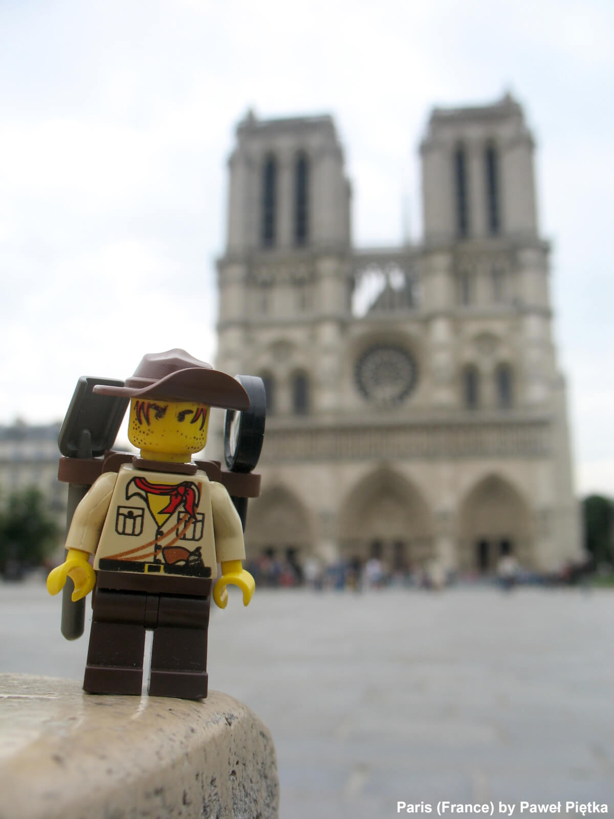 Paris (France) - Notre-Dame Cathedral